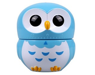 Cute Cartoon Owl 60-Minute Kitchen Timer